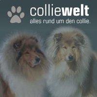 (c) Colliewelt.de